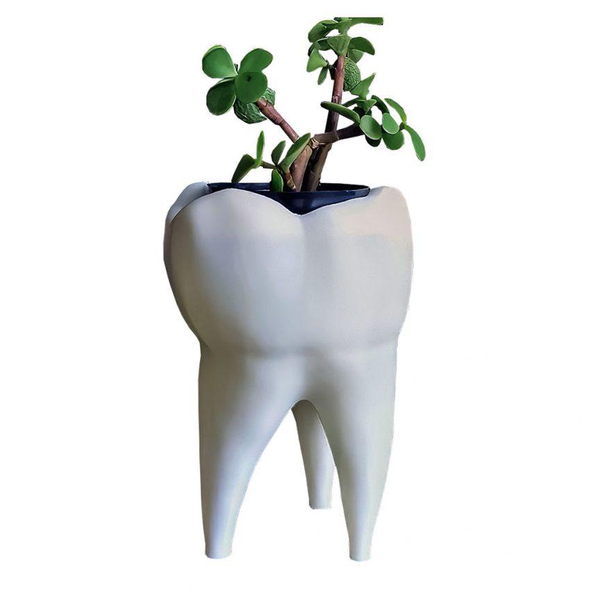e4240dfbd3ded2cbacc3c783152v flower pots pots pot tooth 1
