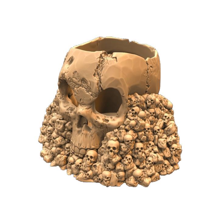 720X720 skull holder